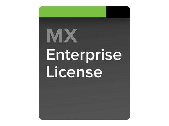 LIC-MX100-ENT-3YR